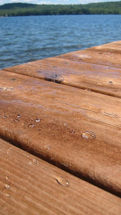 wood dock next to lake