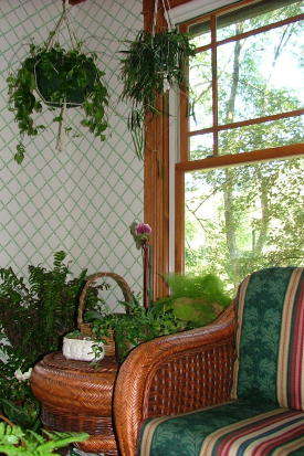 This wood window in my, well actually Kathy's, sunroom is certified.  It was made by one of the top window manufacturers in the world. Photo by: Tim Carter