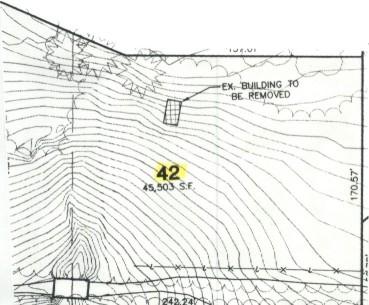 Lot 42