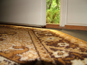Look at the daylight under the door. There is about 3/4 inch clearance between the bottom weatherstripping and the oriental throw rug. PHOTO BY: Tim Carter
