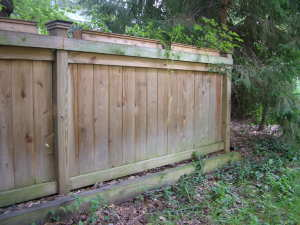 This privacy fence does not extend the entire property line. It is just a 25-foot-long barrier that creates a cocoon of solitude for my neighbor's patio and screened porch. PHOTO CREDIT: Tim Carter