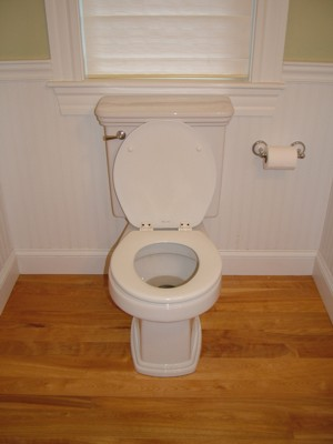 This toilet looks pretty benign, but it has quite a few parts that make it work reliably. PHOTO CREDIT: Tim Carter