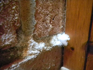 Efflorescence growing in the mortar of a brick fireplace. PHOTO CREDIT: Michael Hannum