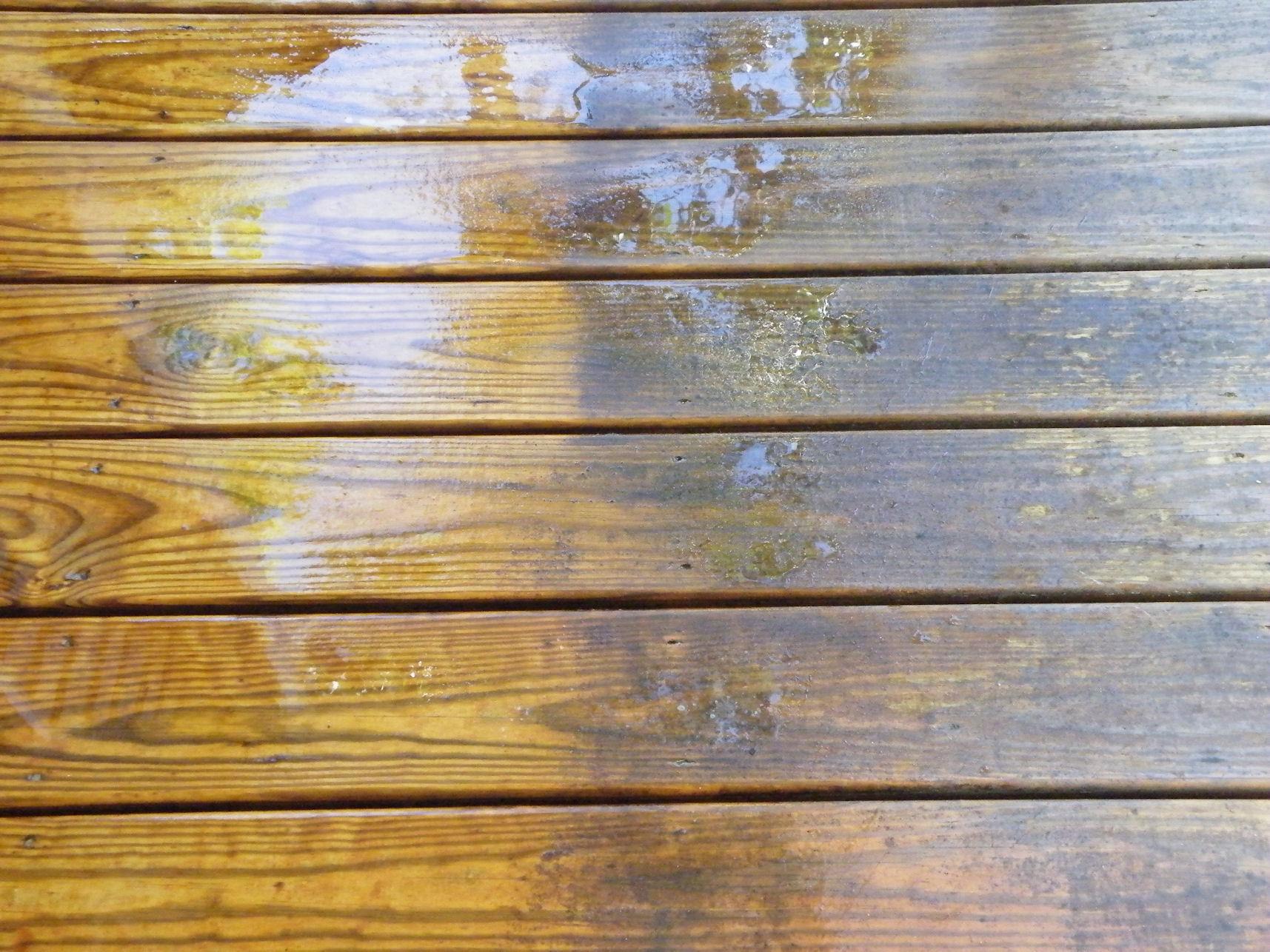 Fowler's Deck